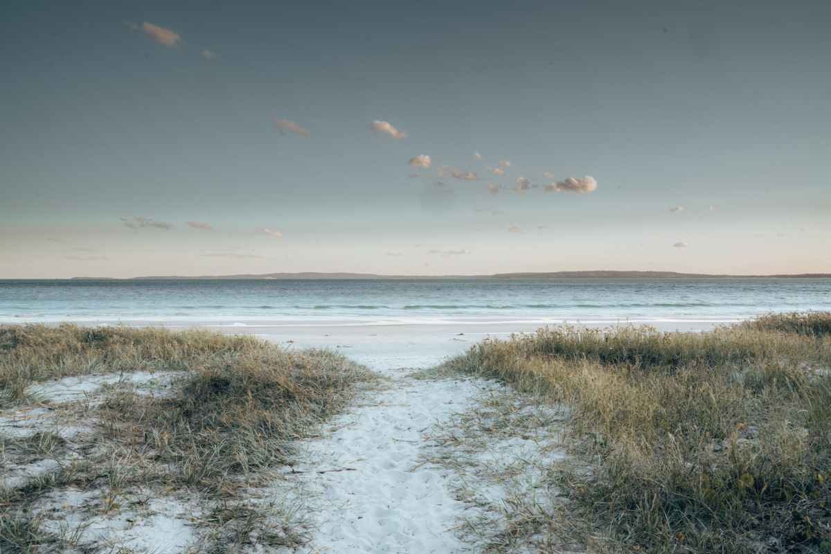sunrise on a white sand beach with grass on either side of a path to the water